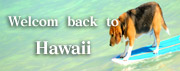 Welcome back to Hawaii
